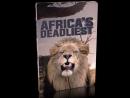 Хищники Африки  Смертельное оружие  часть 7 из 8   2011-2016  Full HD