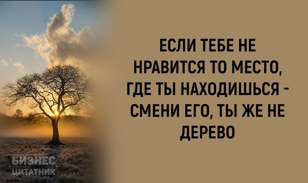 Фото №456275736 со страницы Анастасии Путинцевой