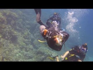mahmoud dancing underwater