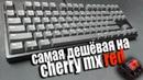 САМАЯ ДЕШЁВАЯ МЕХАНИКА НА CHERRY MX RED | Честный обзор механической клавиатуры Ikbc C87