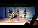 вечерняя шоу программа артистов акробатов