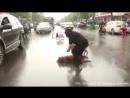 Eine herzzerreißende Szene – Hund versucht seinen toten Freund aufzuwecken