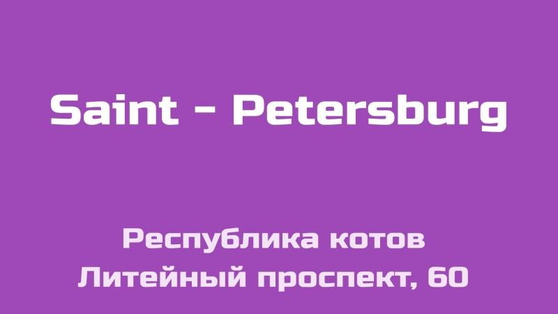 SPLACE. Выпуск 5. Республика котов