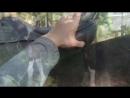 Типы подушек и как они лежат на лошади с прямой спиной