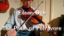 Eileen Oge - The Pride of Petravore