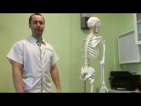 Как работает остеопат