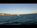 Мини круиз с ветерком по Чёрному морю mp4