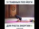 5 главных поз йоги