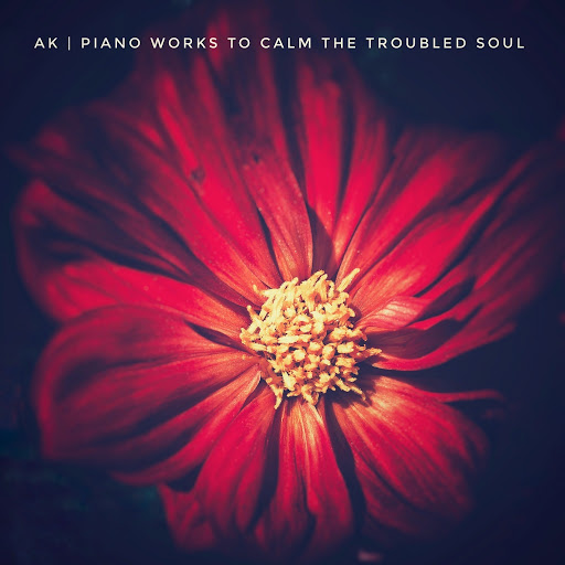 ak альбом Piano Works To Calm The Troubled Soul