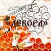 Православное молодёжное общество «ДЕВОРА»