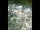 Мужик прыгает в речку с пираньями