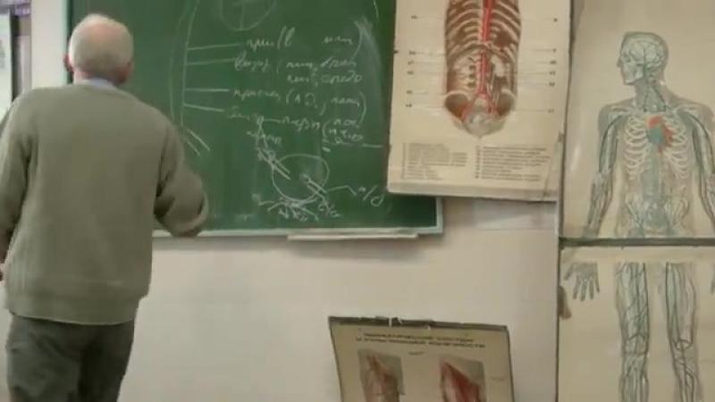 Системы верхней и нижней полых и воротной вены