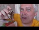 Пряник новый, видео про дырку в прянике, Геннадий Горин