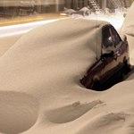 Новый бизнес: в Москве машину от снега очистят за 5 000 рублей
