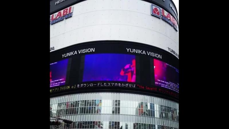 BEFORE I DECAY || YUNIKA VISION (SHINJUKU)