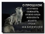 Кай Метов....