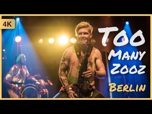 Too Many Zooz – Berlin Germany 🎉 YAAM 15032018