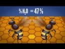 Как пчёлы делают мёд ¦ Озвучка DeeAFilm