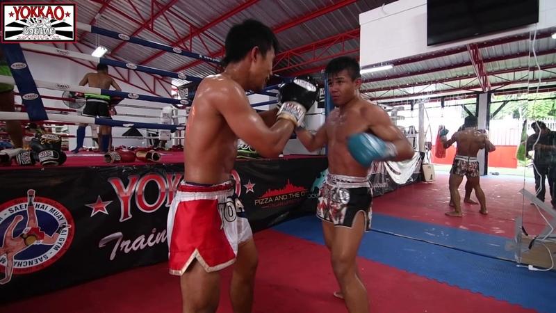 Muay Thai Sparring Manachai welcoming Thum at the Gym - YOKKAO Training Center Bangkok