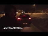 В городе застрелили рысь ? TV29.RU (Северодвинск)