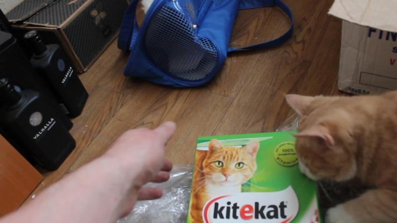 Реклама Кити-Кат