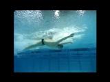 Individual Medley Michael Phelps Ryan Lochte