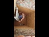 Кот эффектно выбрался из ямы