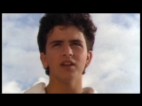 Glenn Medeiros - Nothings Gonna Change My Love For You (1987)