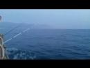 Морская прогулка с дельфинами⛵️🐬☀️