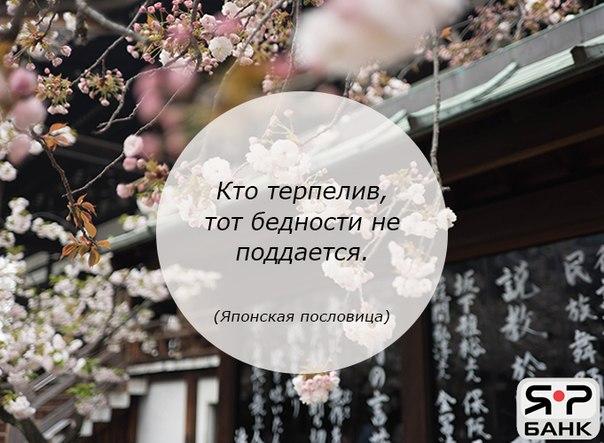 Фото -59119955