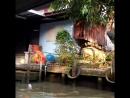 Масленица у всех разная...))🔥  У нас температура воздуха плюс 40))  Мы посетили плавучую деревню на северо-западе Тайланда... Ее