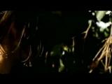 Мясорубка / Cheuuat Gaawn Chim (2009)