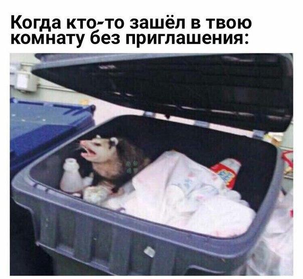 Фото №457050349 со страницы Алексея Загорского
