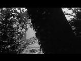 0x3 - Vinyl Rain (Музыкальное видео)