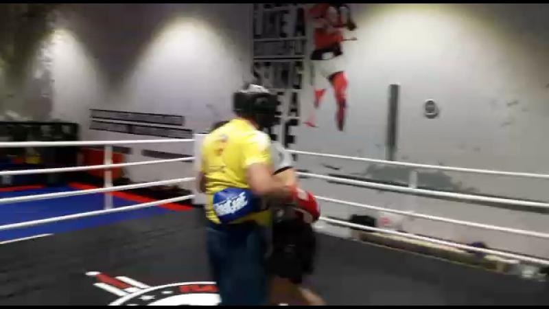 Папа бокс