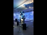 выставку гуру техно-арта Ясухито Юдагавы