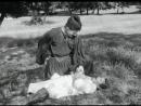 1963 - Капитан Тенкеш / A Tenkes Kapitanya (01-03)
