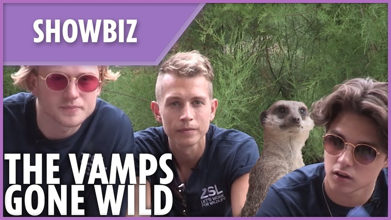 The Vamps gone wild at the zoo!
