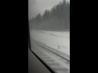 Высокоскоростной поезд Сапсан Москва - Питер