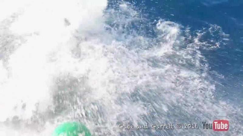Водолаз родился в рубашке, нападение большой белой акулы!