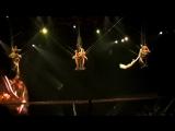 Cirque du Soleil OVO - воздушные акробаты