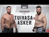 UFC 221 Tai Tuivasa vs. Cyril Asker highlights