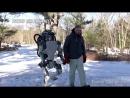 ENDE DER MENSCHHEIT Kampfroboter und künstliche Intelligenz! Sophia, Musk, Hawking, DARPA, Pentagon