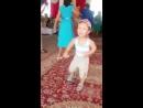 Танцы и юмор: 5 - ти летний малыш зажигает на свадьбе!