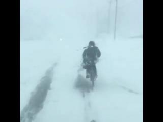 Южно-Сахалинский велосипедист