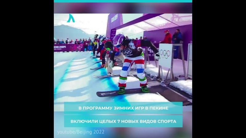 Новые дисциплины Олимпиады | АКУЛА