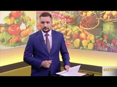 Кубань24 - Вкус Жизни от Школы Жизни 09:06:2018