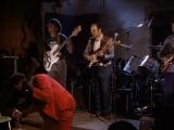 Блюз глубокого юга (1991) Роберт Мугг