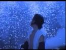 концерт Майкла Джексона в Бухаресте (1992 г.) охренеть смотри все-че он с людьми тварит!!!!