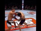 #UFC222 Frankie Edgar